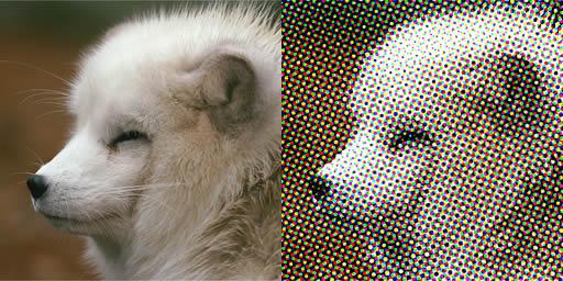 http://reddog.s35.xrea.com/img/AmiTone2.jpg